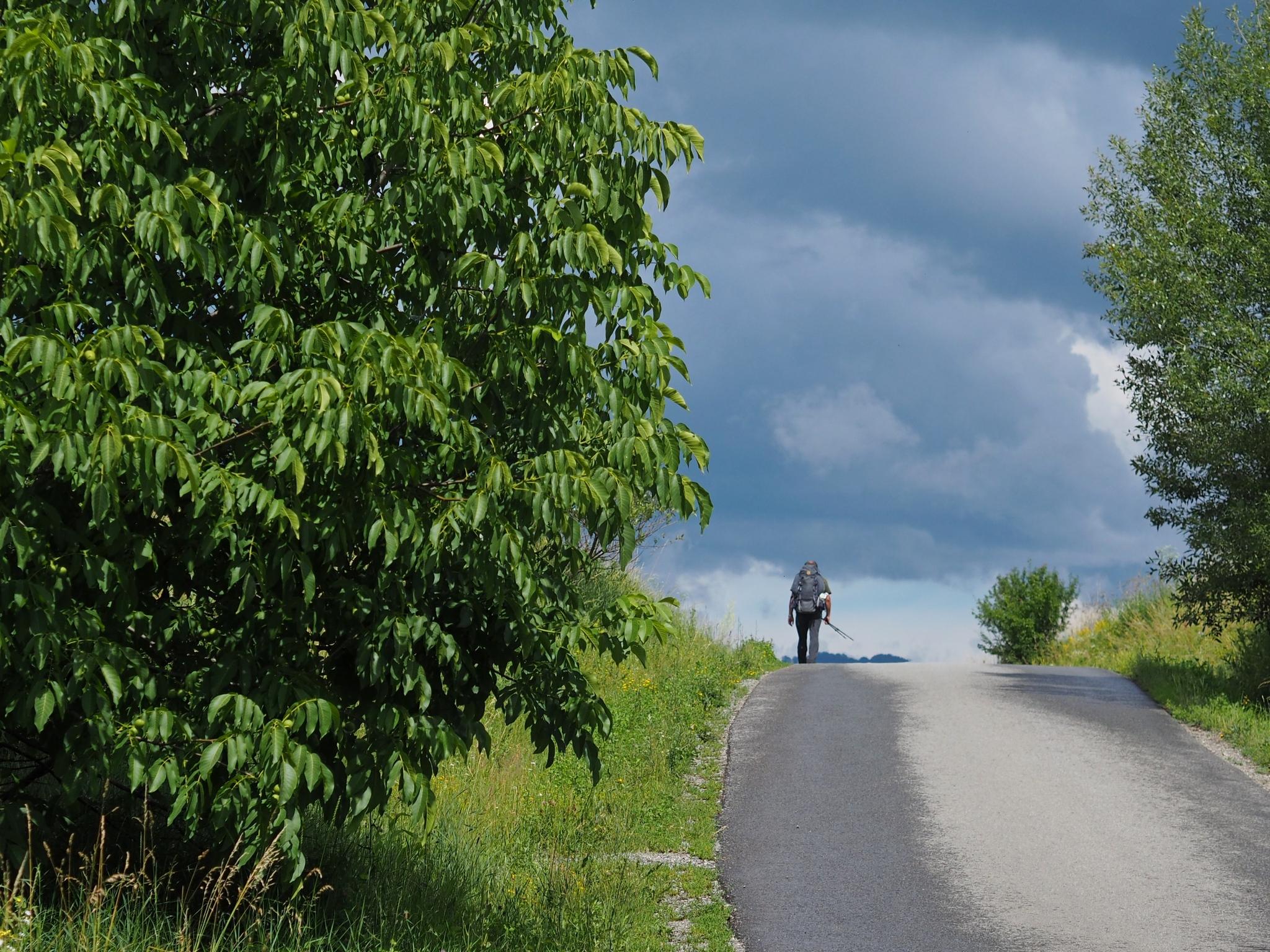 Via Transilvanica: La capatul drumului  |Via Transilvanica